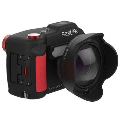 Sealife-DC2000-Camera met groothoeklens-wobbegong-Duiken