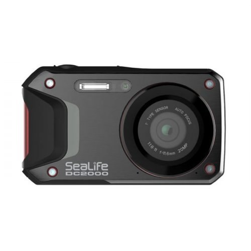 Sealife-DC2000-Camera-wobbegong-Duiken (3)