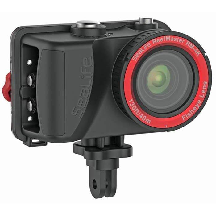 Sealife-Reefmaster RM 4K SL350-Camera-wobbegong-Duiken (3)